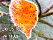 Jobs for winter